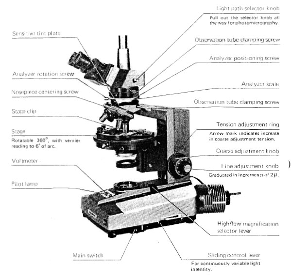 diagram of a microscope pdf